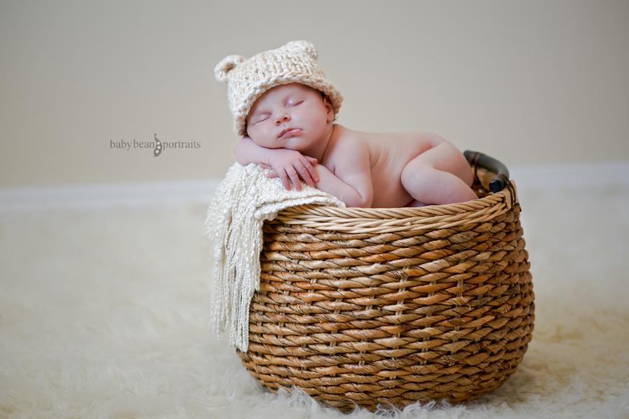 Basket Bear
