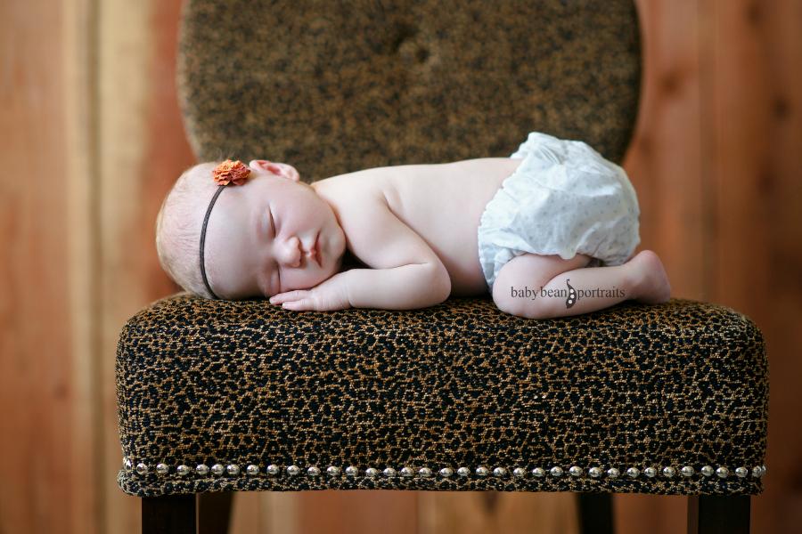 Lulu in Leopard