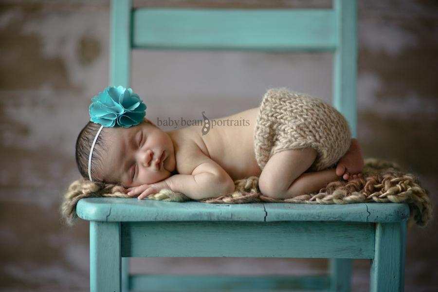 Blue-Bowed Beauty